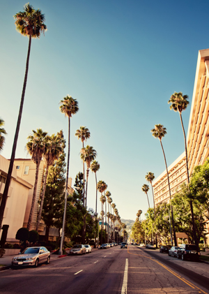 Criminal charges in Beverly Hills